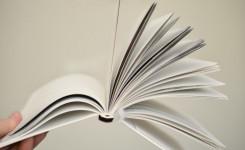 Literatuurkring